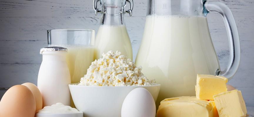 Imagem do post Alimentos ricos em cálcio garantem a boa formação dos ossos e dentes