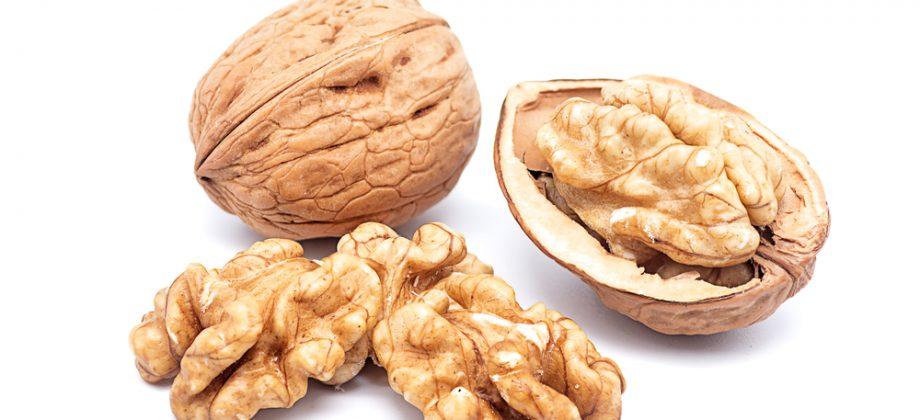 Imagem do post Entenda a importância da vitamina E e de outros antioxidantes para sua saúde