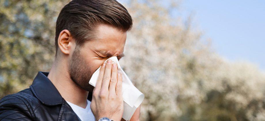 Imagem do post Quais são os principais causadores de alergias respiratórias no dia a dia?