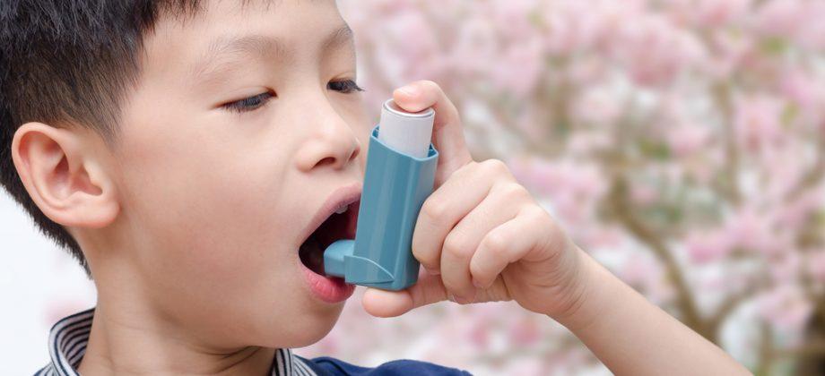Imagem do post O que acontece com os pulmões na hora de uma crise de asma?