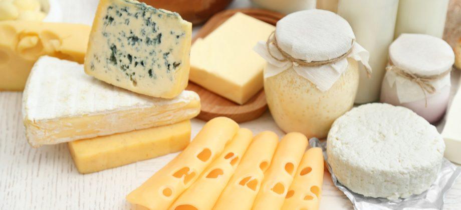 Imagem do post Intolerante à lactose? Confira outras opções de alimentos ricos em cálcio para incluir em sua dieta