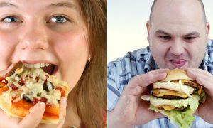 Por que gostamos tanto de alimentos muito calóricos e pouco nutritivos?