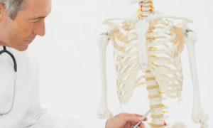Saúde dos ossos: Quais são as funções dos osteoblastos e osteoclastos?