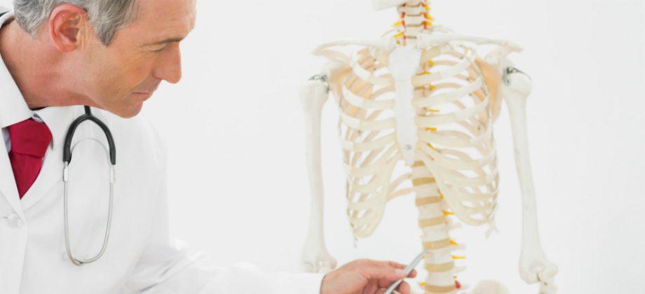 Imagem do post Saúde dos ossos: Quais são as funções dos osteoblastos e osteoclastos?