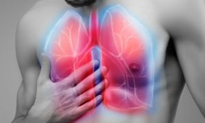 Brônquios: Qual é a função deste condutor no sistema respiratório?