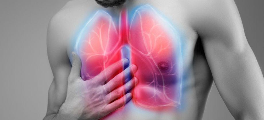 Imagem do post Brônquios: Qual é a função deste condutor no sistema respiratório?