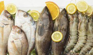 Quais são as principais fontes de zinco na alimentação?