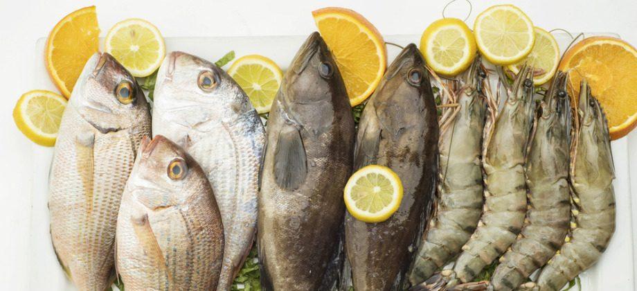 Imagem do post Quais são as principais fontes de zinco na alimentação?
