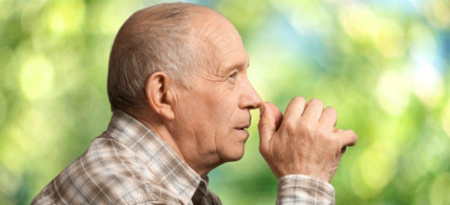 Imagem do post É possível recuperar áreas do cérebro afetadas pelo mal de Alzheimer?
