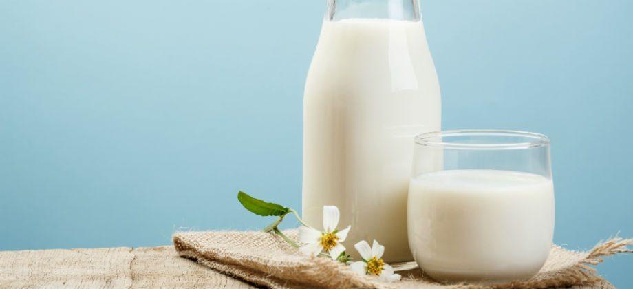 Imagem do post Qual a diferença entre intolerância à lactose e alergia ao leite?