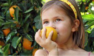Qual a importância da vitamina C na saúde das crianças?