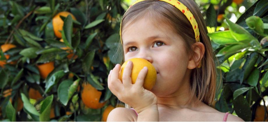 Imagem do post Qual a importância da vitamina C na saúde das crianças?