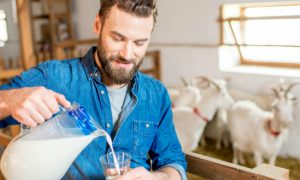 Queijo e leite de cabra também são ricos em cálcio?