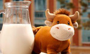 Qual é a vantagem da ingestão de alimentos de origem animal ricos em cálcio?