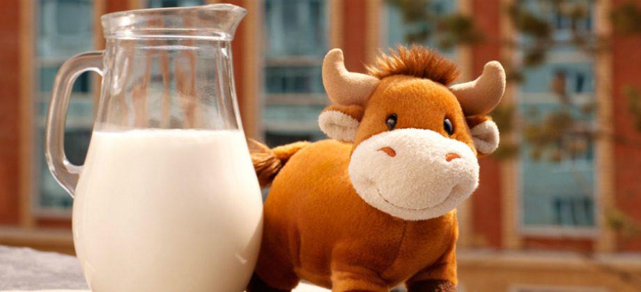 Imagem do post Qual é a vantagem da ingestão de alimentos de origem animal ricos em cálcio?