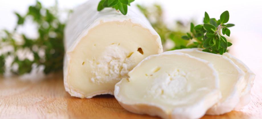 Leites e queijos de cabra e búfala possuem níveis de cálcio similares aos derivados de vaca?