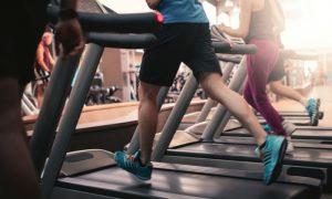 Quais medidas são importantes para a manutenção da saúde cardiovascular?