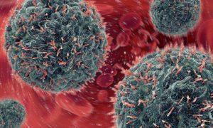 Infecção: Saiba como o sistema de defesa atua contra vírus e bactérias!