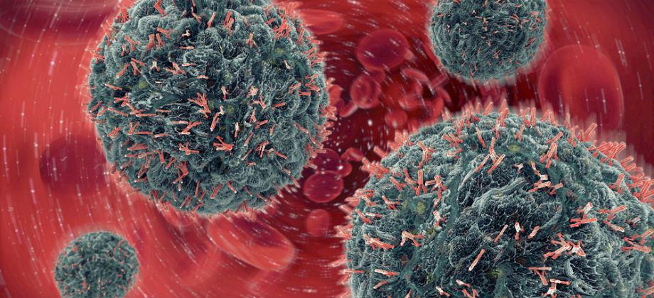 Imagem do post Infecção: Saiba como o sistema de defesa atua contra vírus e bactérias!