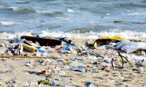 Quais são os riscos de mergulhar em uma praia imprópria para banho?