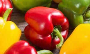 Hemorroidas: A alimentação pode auxiliar o tratamento? Como?