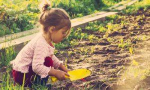 Imunidade infantil: O excesso de higiene e assepsia pode prejudicar as defesas dos pequenos?