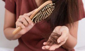 Quais são os benefícios do óleo de borragem para evitar a queda de cabelos?