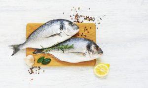 A importância da alimentação adequada e balanceada: Relação do intestino com a imunidade