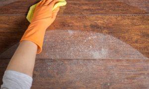 Asma: como evitar soltar muita poeira na hora de limpar a casa?